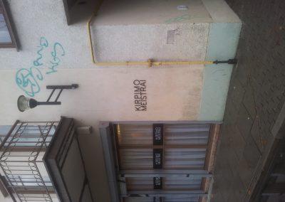 Frezuotos_raides 2