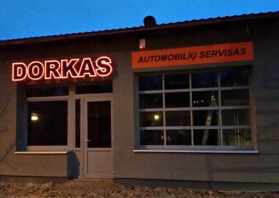 Dorkas_turines_nakti
